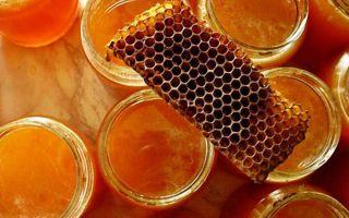Как применять прополис: спрей для горла, масло, настойка