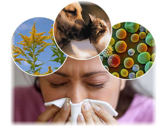 аллергия при ларингите
