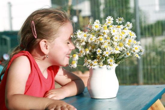 лечение аллергического насорка