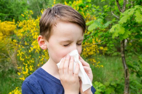 аллергический ринит лечение